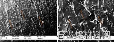 对齐的GNP基环氧复合材料的断裂表面的SEM图像